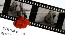 Cinema e melodramma