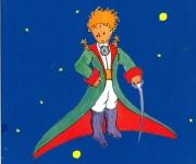 """Piccolo Principe…""""Buon Compleanno!"""""""
