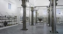 Utilizzo immagini del patrimonio della Fondazione Sicilia e  fotoriproduzioni patrimonio librario