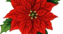 Chiusura festività natalizie